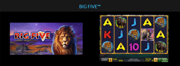 Novoline Big Five Slot Spiel