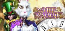 White Rabbit Slot – Tipps und Tricks für den White Rabbit Spielautomat