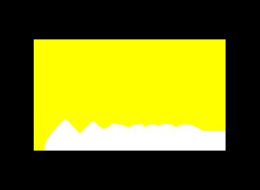 Wildz Logo